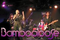 Bambooloose